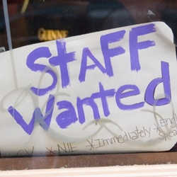 festival-staff-wanted