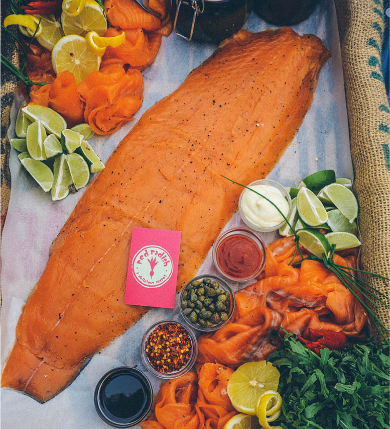 Fresh salmon fillet for backstage TV and Film catering